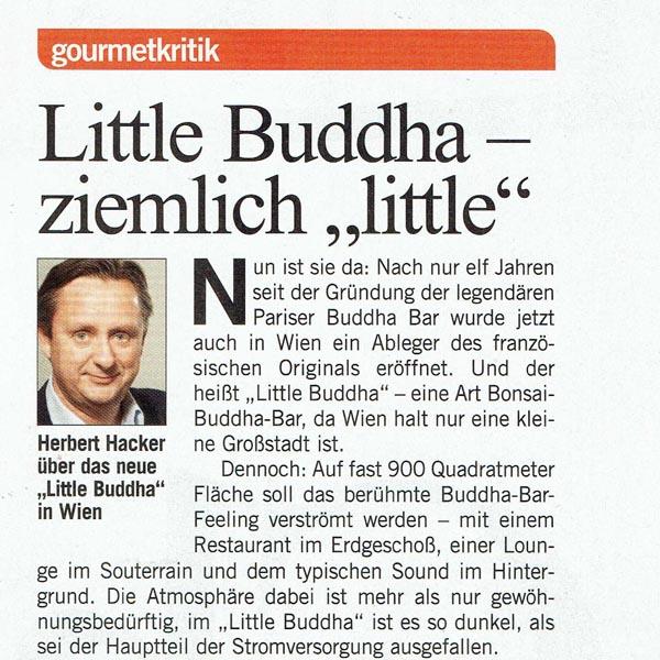 PRESSE - LITTLE BUDDHA - Format - 25. Jänner 2008 - Seite 97